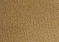 Buckskin Beige Plush Carpet
